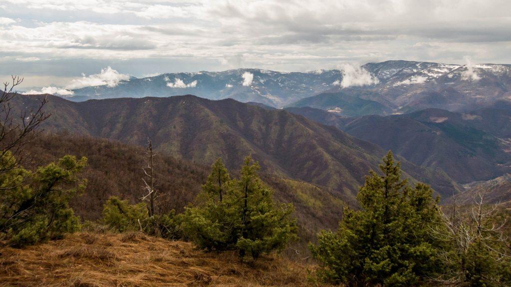 Sokolske planine Rožanj šumska i prirodna medicina i psihoterapija